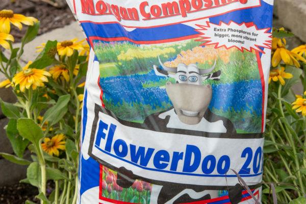 Flower Doo 201