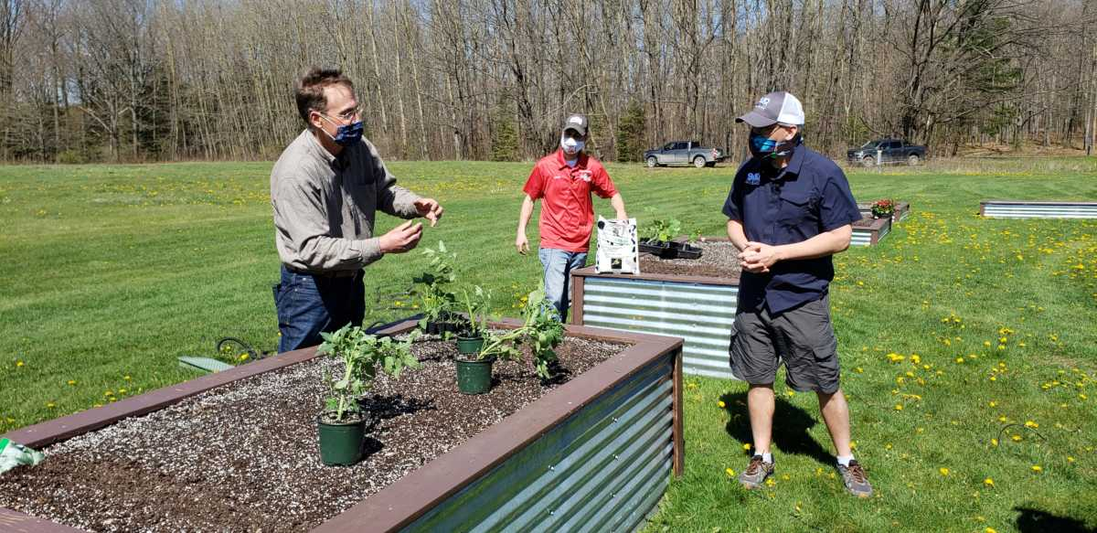 What's Growing With Tom 2020: Transplanting Veggies