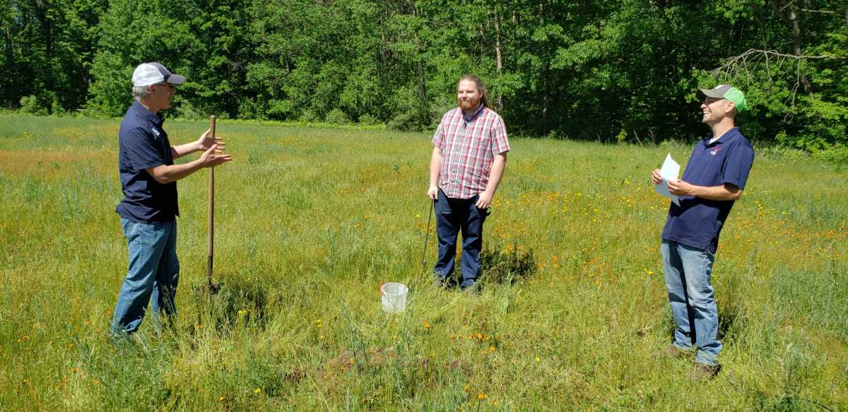 What's Growing With Tom 2020: Growing Hay