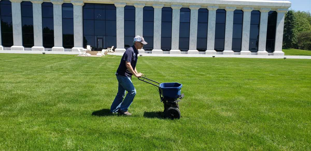 What's Growing With Tom 2020: Summer Lawn Care