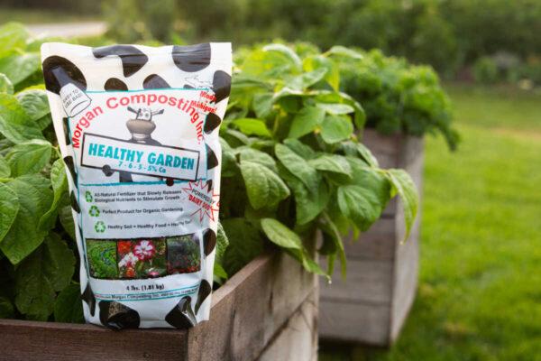 Healthy Garden Veggies